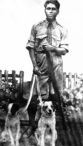 Man with gun and dogs