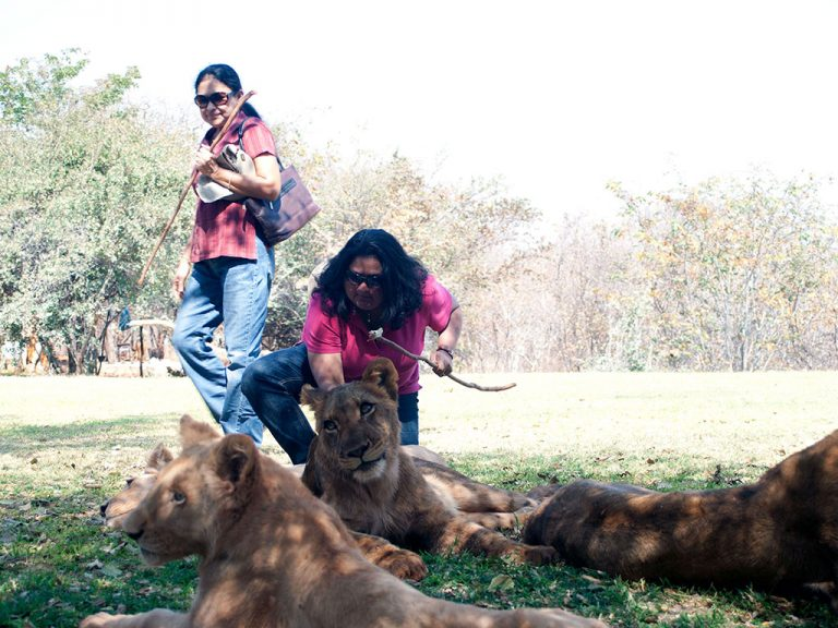 Lady with lions